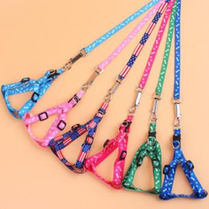 Cat Leashes with Matching Harnesses